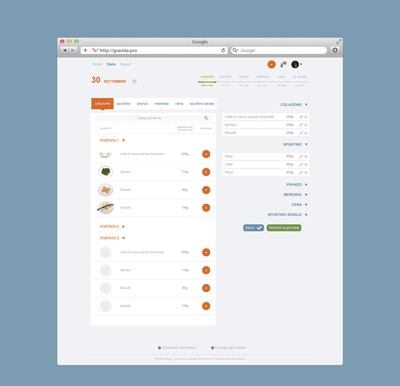 Gravida's project Web application interface design for MeTeDa